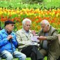 ایجاد سفرهای ارزان برای بازنشستگان در برنامه کار صندوق بازنشستگی