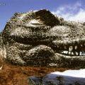 کشف صدها تخم دایناسورهای بالدار