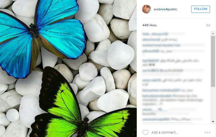 عکسهایی از طبیعت در اینستاگرام عرب نیا!+تصاویر