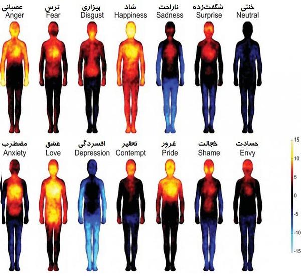 تصویر : نقشه احساسات بدن انسان