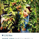 عکسهای شخصی شهره سلطانی بازیگر زن ایرانی+تصاویر