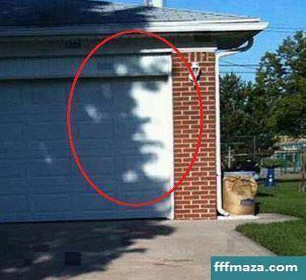 تصویر : عجیبترین عکس، نکته رو گرفتی؟