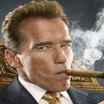 آرنولد شوارتزنگر با یک سریال جدید می آید!