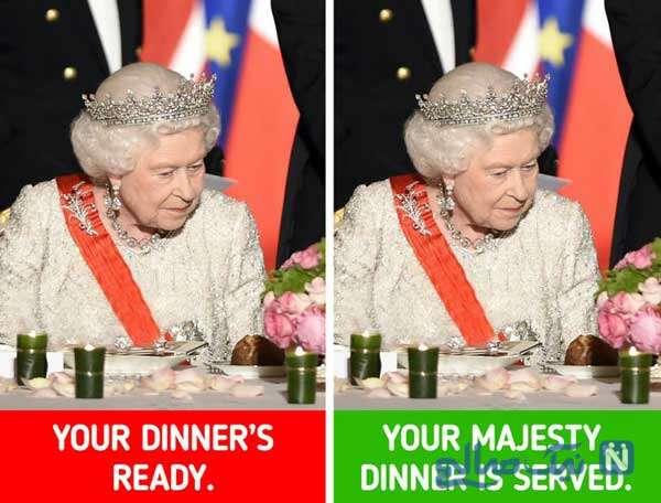 سرو شام