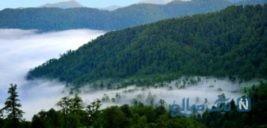 آبشاری در دل جنگل های گیلان +تصاویر