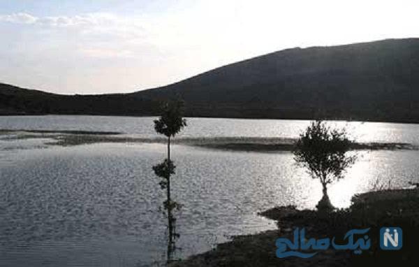 شش پیر شیراز