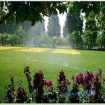 باغ زیبای جهان نما در شیراز +تصاویر