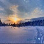 نکاتی که قبل از سفر به فنلاند بهتراست بدانید!!!