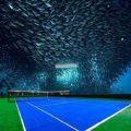 زمین تنیس زیر آب دریا در دبی !!+تصاویر