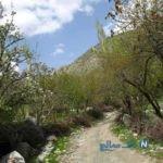 """سفر به """"دلفارد"""" بهشت گم شده کرمان را از دست ندهید+تصاویر"""