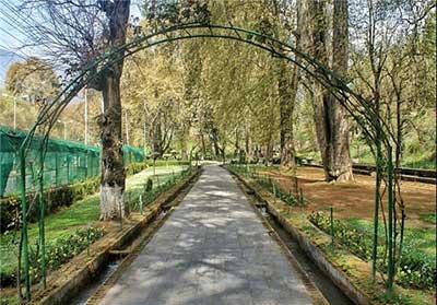 «باغ هارون» جلوهای بسیار زیبا از طبیعت +تصاویر