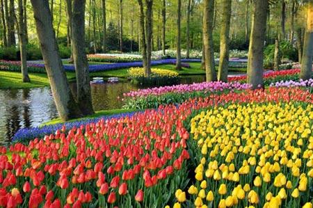 زیباترین باغ های دنیا +تصاویر
