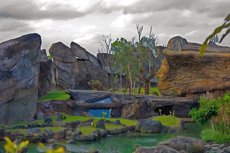 باغ وحش استثنایی در والنسیا (+عکس)