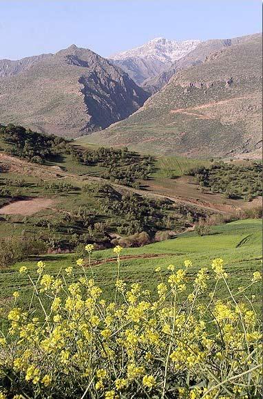 روستای پالنگان؛ از زیباترین روستاهای پله کانی +تصاویر