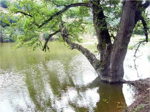 دریاچه شورمست+تصاویر
