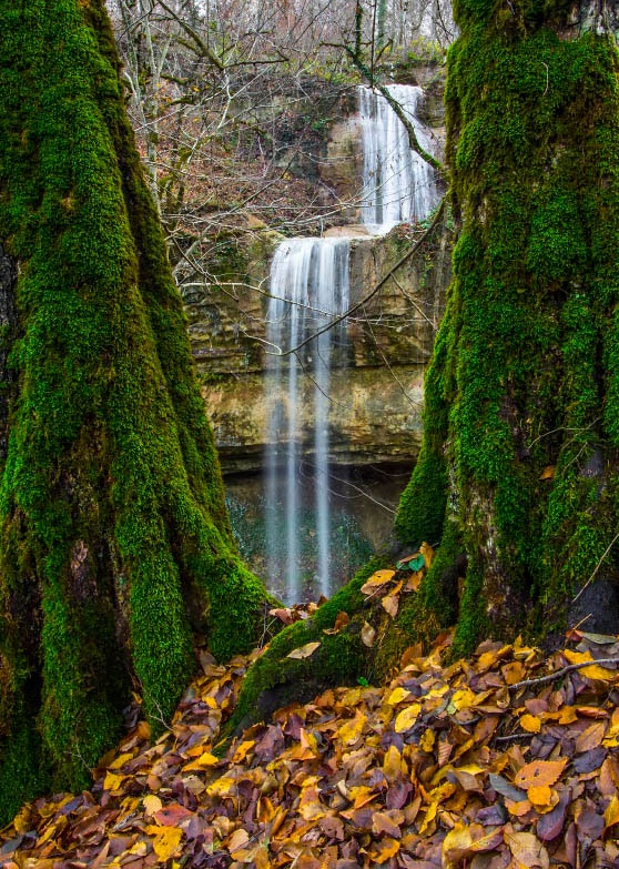 آبشار زیبای کارنام در قلب جنگلی انبوه و بسیار دل انگیز+تصاویر