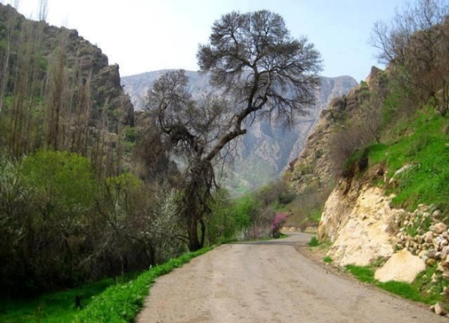 روستای کلم, مقصدی خنک برای سفر تابستان+تصاویر