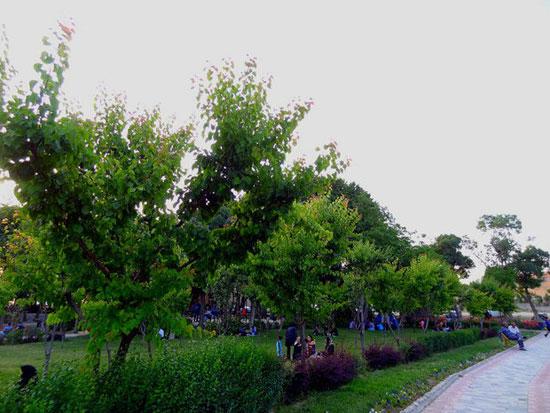زیباترین تکیه باغ های ایرانی در بروجرد+تصاویر