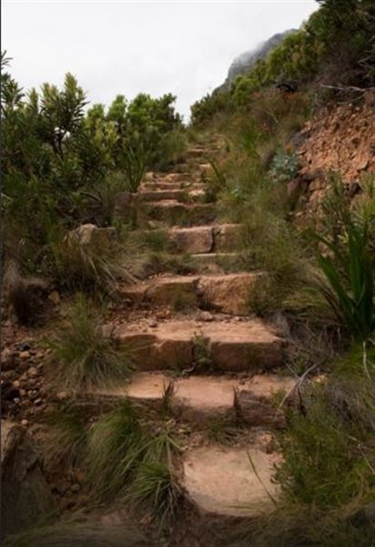 پارک ملی و تله کابین تیبل مانتین +تصاویر
