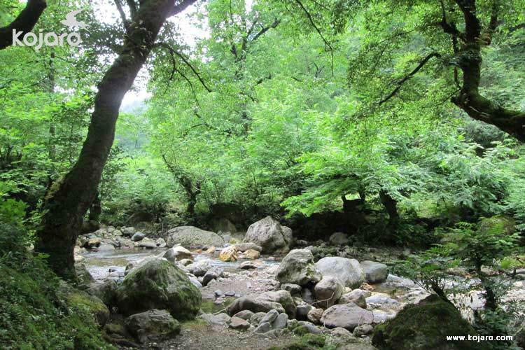 روستای فوشه بهشتی کوچک در گیلان+تصاویر