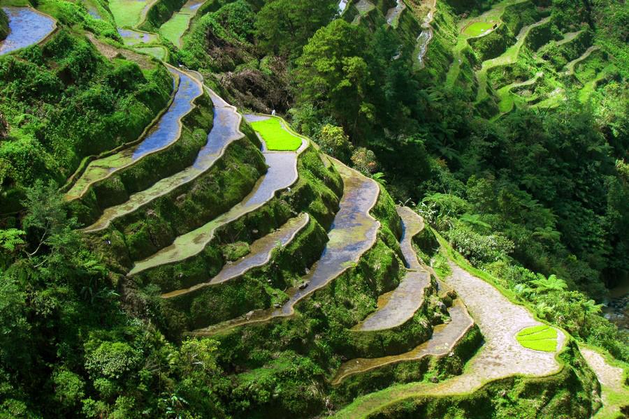 فیلیپین و جاذبه های خیره کننده ای که شما را به حیرت می آورند+تصاویر