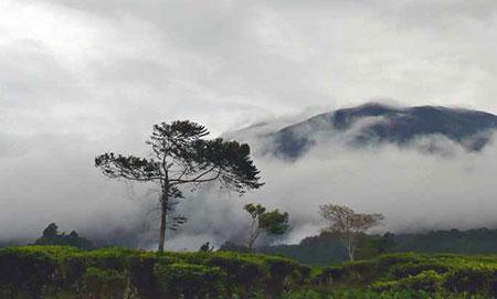 طبیعت فوق العاده زیبا و دیدنی و تاریخی کشور اندونزی + تصویر