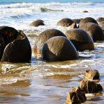 تخم های زیبا و خیره کننده  اژدها در سواحل کوکوهه + تصاویر