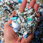 ساحل کامیلو ; گشت و گذاری در ساحلی پلاستیکی در جزایر هاوایی+تصاویر