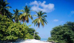 جاذبه های گردشگری مالدیو ودیدنی های آن + تصاویر