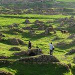 راهنمای سفر ایلام  و دیدن زیبایی های بینظیر آن + تصاویر