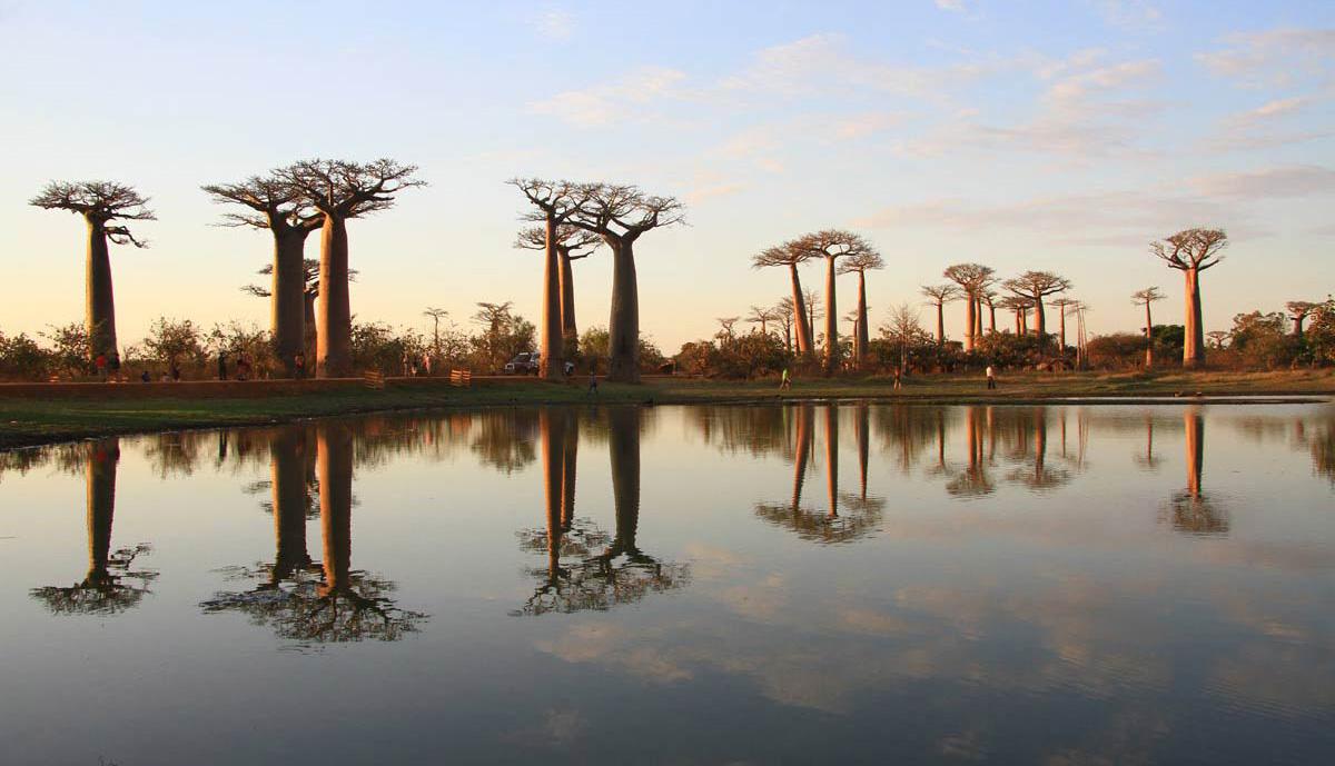 راهنمای سفر به ماداگاسکار