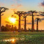 راهنمای سفر به ماداگاسکار و مکانهای دیدنی آن + تصاویر