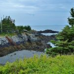 راهنمای سفر به نیوبرانزویک از چهار استان آتلانتیک کانادا