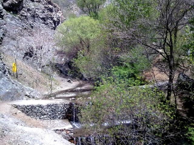 بوستان گلابدره و سفری رویایی به این بهشت زیبا در شمال تهران