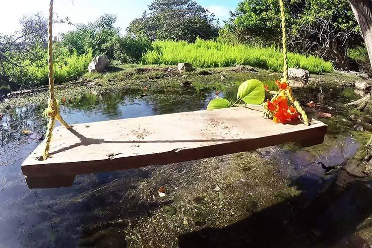 راهنمای سفر به جزیره آروبا