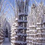 جاذبه کلیسای درختی باشکوه ترین و زیباترین کلیسای جهان !