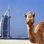 بهترین زمان سفر به دبی برای سفری آرام