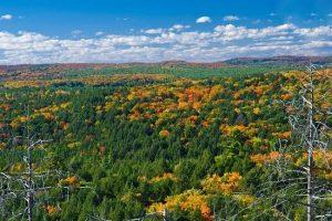 خزان تماشایی پارک ایالتی آلگونکین در کانادا