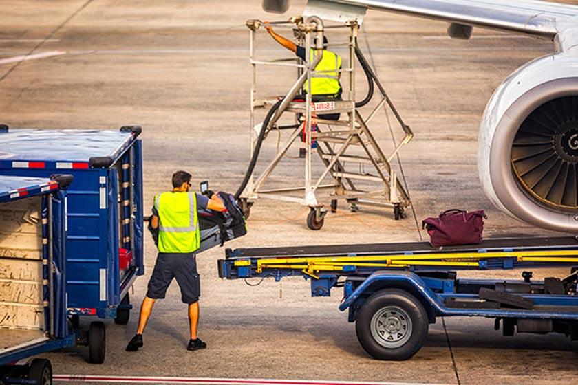 عجیب ترین بارهای هواپیما را بشناسید (قسمت اول)