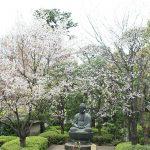 آشنایی با پایتخت ژاپن ، توکیو شهری برای تمام فصول