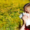 راحت ترین روش هابرای کنترل آلرژی در سفر