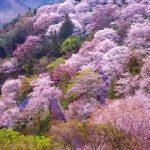 """بهترین و زیباترین مقاصد گردشگری خارج از ایران """"سفر در بهار"""""""