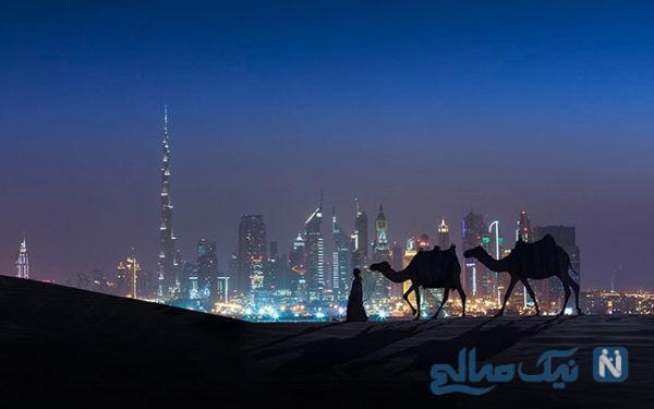 دبی و جسارت پذیرش ایده های نو