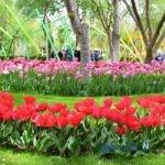 جاذبه های دیدنی کرج، ایران کوچک را بشناسید