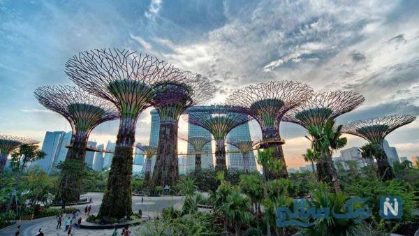 باغ های خلیج