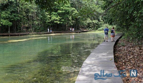 دریاچه مک ریچی