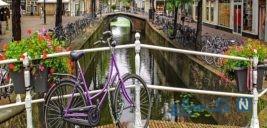 جاذبه های توریستی هلند ؛کشور گل لاله