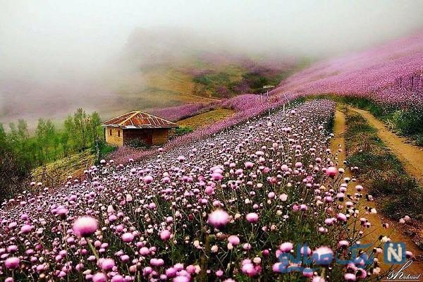 جاذبه های گردشگری تالش زیبا در استان گیلان