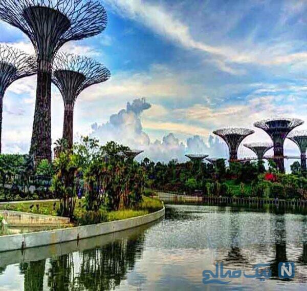 باغهای خلیج و یک نمای فوقالعاده