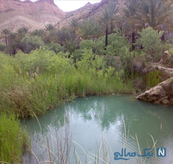 معرفی جاهای دیدنی لامرد استان فارس